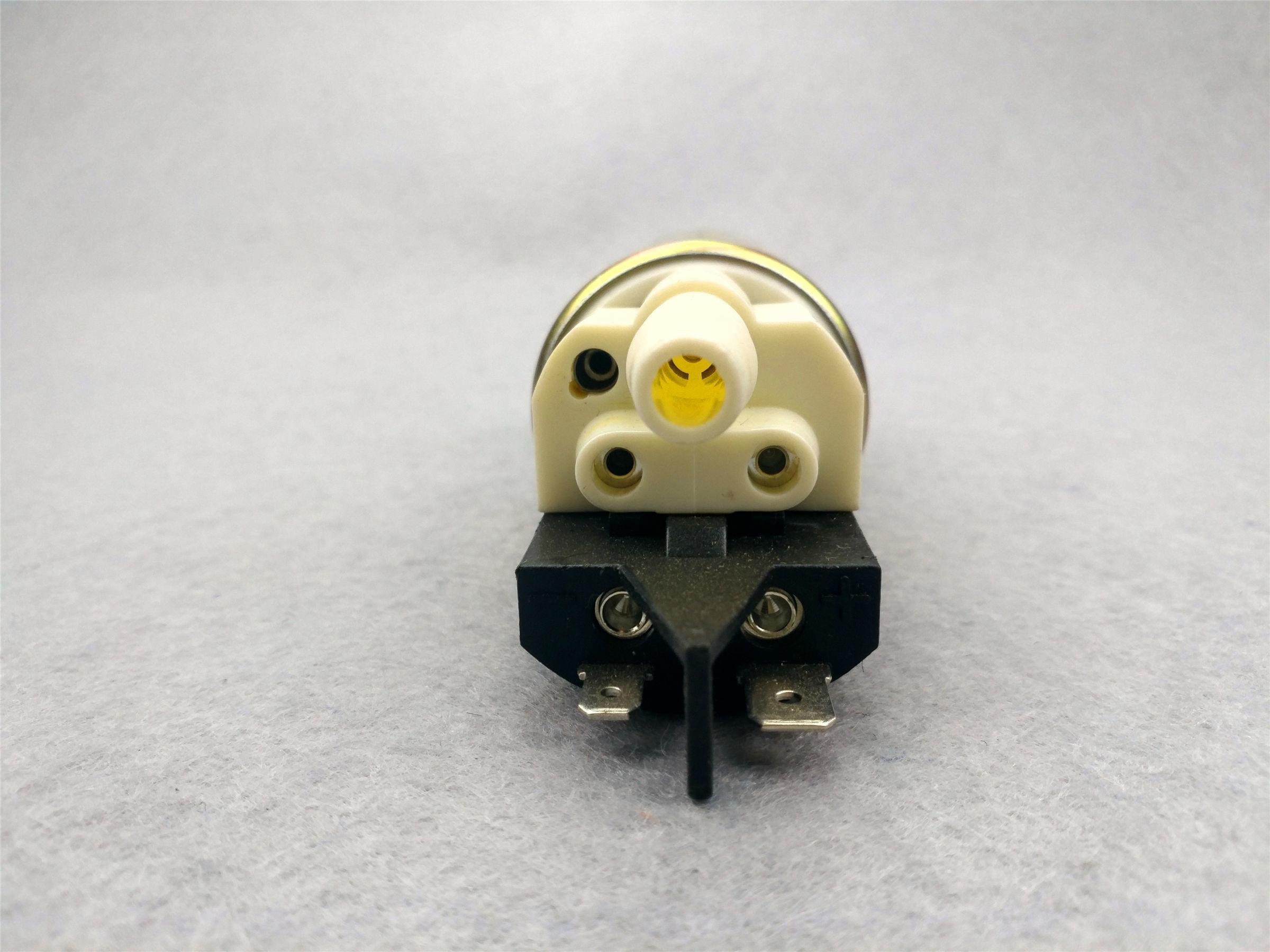 369802pump core(350kpa,≥80L/h,≤5.7A)
