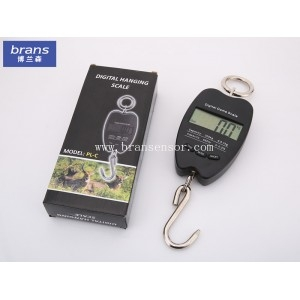 100g, 200g, 300g Digital scales crane scales hanging scales portable scales